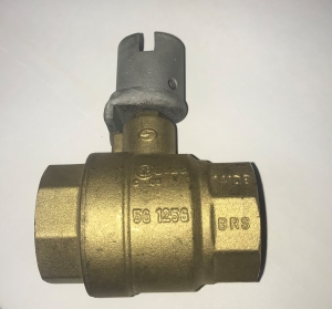 Icebear Flood Water Valve 1 1/4 (Valve only)